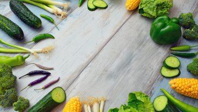 Photo of Wat kan je kweken in een kweektafel?